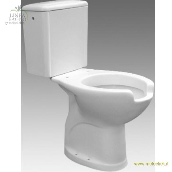 Vaso monoblocco per disabili for Vaso per disabili